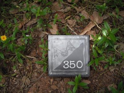 フルーツバット 350