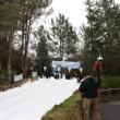 本物の雪を使ったソリのコース